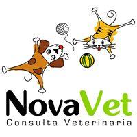 Clínicas veterinarias Lugo Novavet