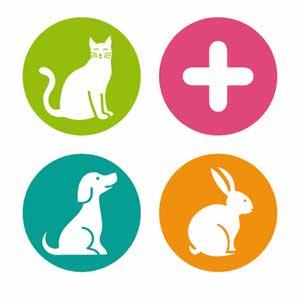 Tiendas mascotas Segovia Nueva Segovia