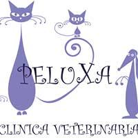 Clínicas veterinarias Pontevedra Peluxa