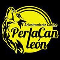 Adiestradores Caninos León Perlacan