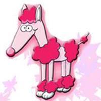 Peluquerias mascotas Pontevedra El Perro Rosa