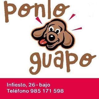 Peluquerias mascotas Gijon Ponloguapo