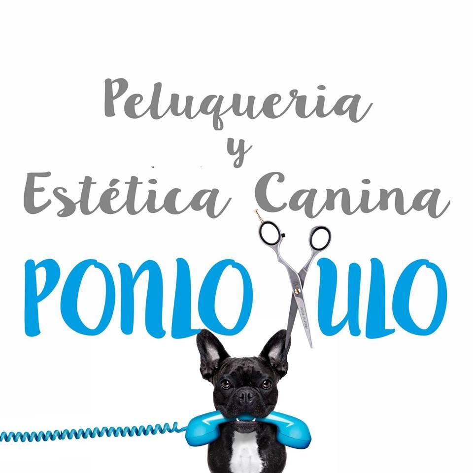 Peluquerias Mascotas en Barcelona Ponlo Xulo