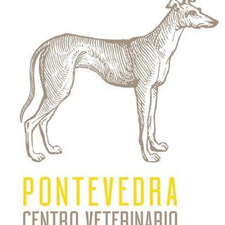 Clínicas veterinarias Pontevedra Pontevedra