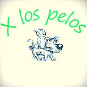 Peluquerias mascotas Pontevedra X Los Pelos