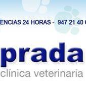 Clinicas veterinarias Burgos Prada