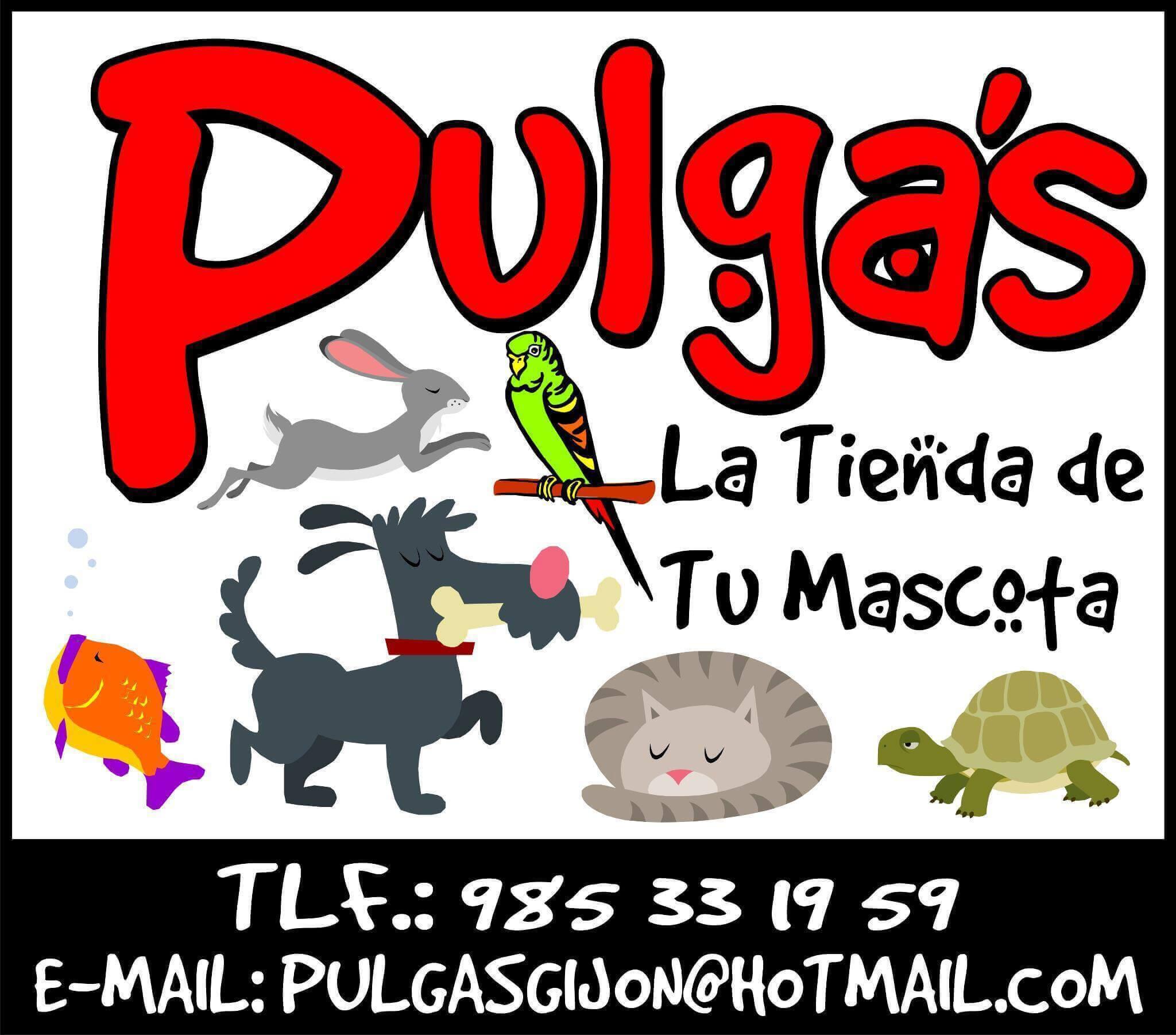 Tiendas mascotas Gijon Pulgas