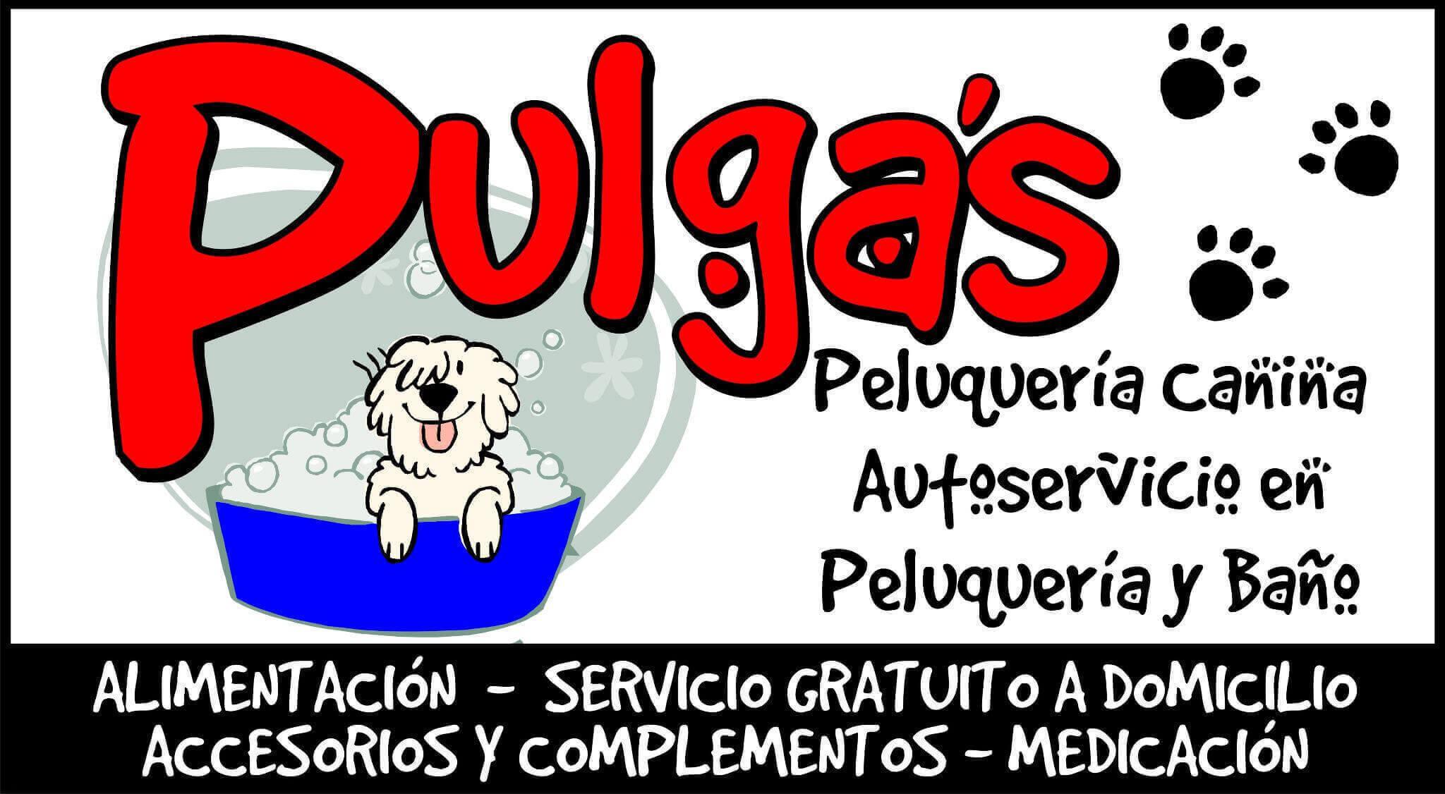 Peluquerias mascotas Gijon Pulgas