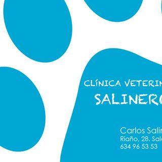Clínicas veterinarias Salamanca Salinero