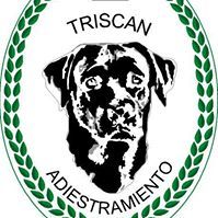 Adiestradores caninos Oviedo Trisc�n
