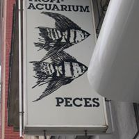 Tiendas Mascotas Vizcaya Tropiacuarium