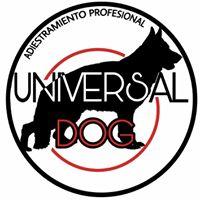 Adiestradores Caninos Zaragoza Universal Dog