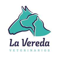 Clinicas Veterinarias Aljucer La Vereda