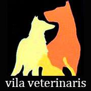 Clinica Veterinaria en Ibiza Vila Veterinaris