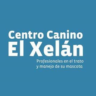 Adiestradores caninos Gijon El Xelan