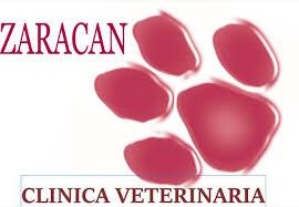 Clinicas Veterinarias Zaragoza Zaracan
