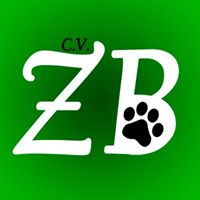 Clinicas Veterinarias Zaragora ZooBoutique