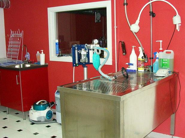 Instalaciones Clínica Veterinaria