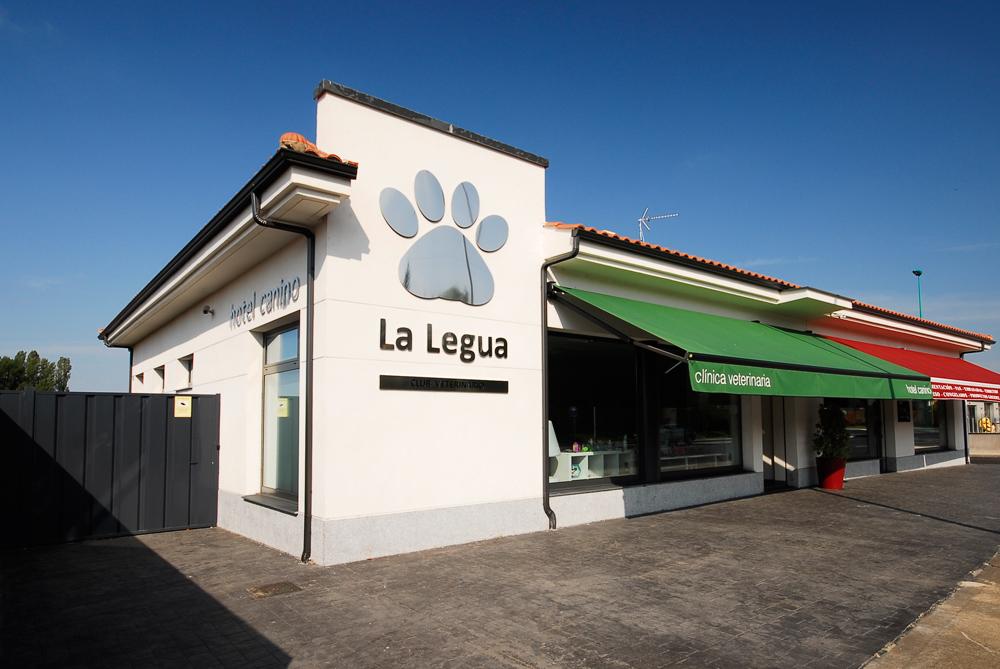 Instalaciones Residencia Canina